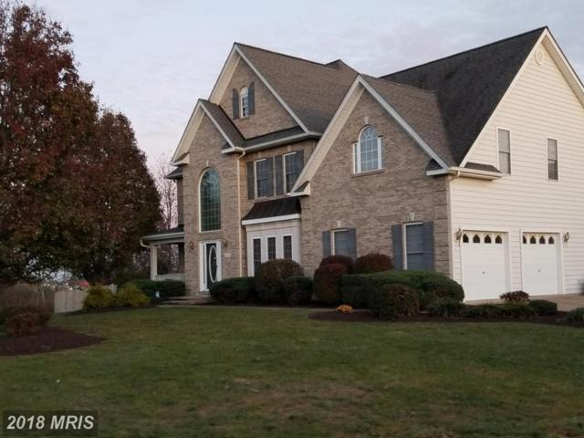 223 Fairfield Drive, Winchester, VA 22602 (#FV10223379) :: The Gus Anthony Team