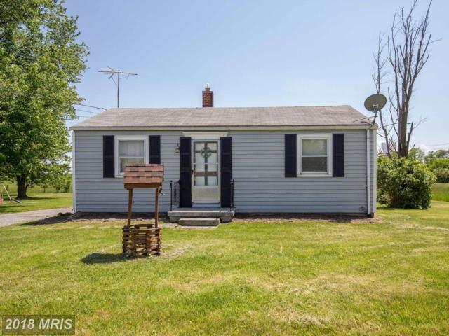 1488 Brucetown Road, Clear Brook, VA 22624 (#FV10252698) :: The Nemerow Team