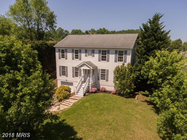 100 Asbury Court, Winchester, VA 22602 (#FV10253004) :: The Maryland Group of Long & Foster