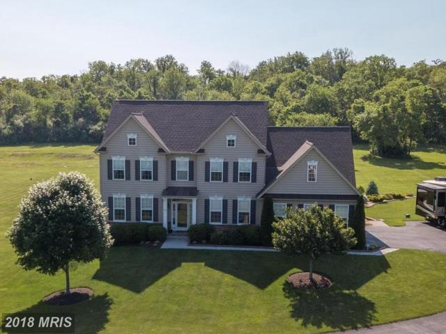 375 Crispin Trail, Winchester, VA 22603 (#FV10253518) :: The Maryland Group of Long & Foster