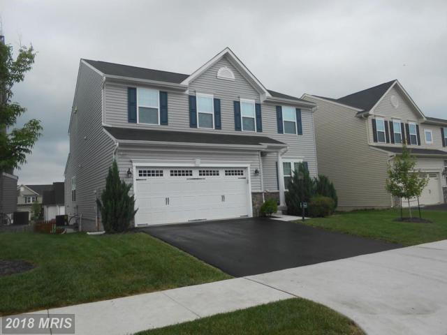 116 Lattice Drive, Stephenson, VA 22656 (#FV10255154) :: AJ Team Realty