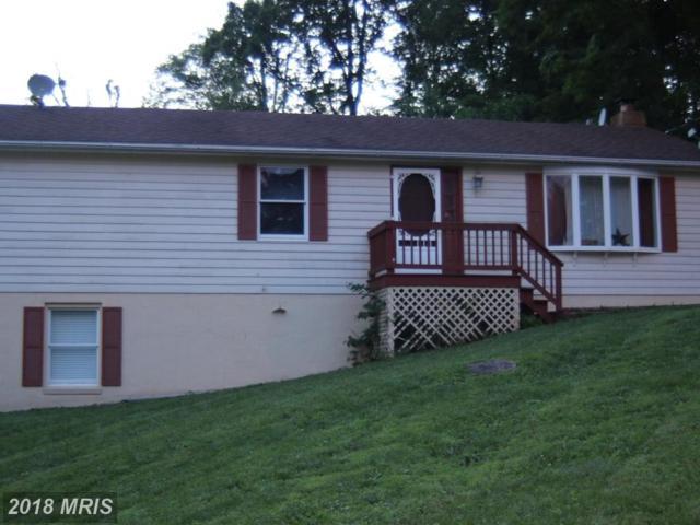 116 Buffalo Trail, Winchester, VA 22602 (#FV10269719) :: The Gus Anthony Team