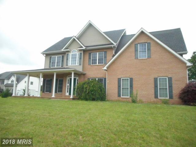1451 Cedar Grove Road, Winchester, VA 22603 (#FV10277211) :: RE/MAX Success