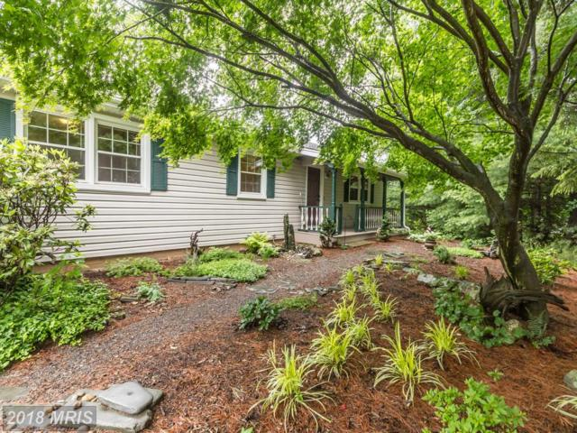 398 Perry Road, Winchester, VA 22602 (#FV10279552) :: The Dailey Group