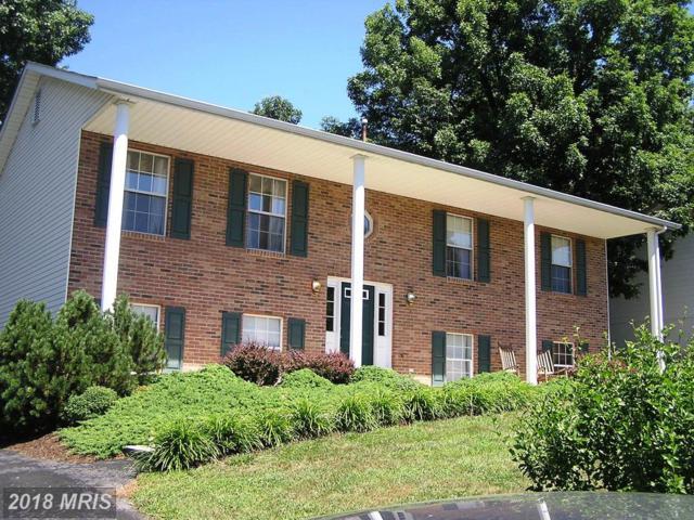 103 Charlton Road, Winchester, VA 22602 (#FV10295872) :: Bob Lucido Team of Keller Williams Integrity