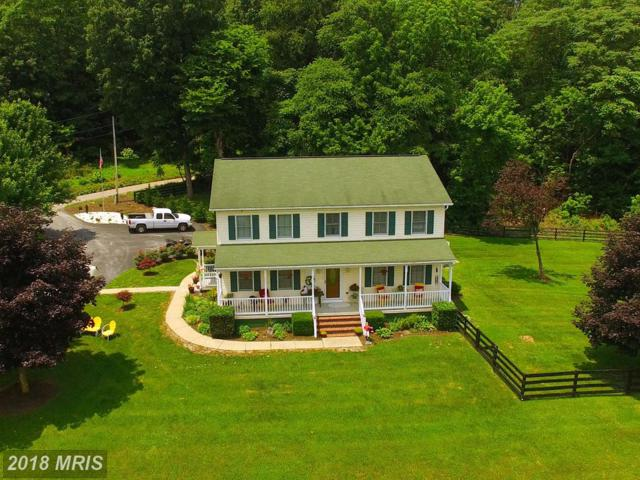 360 Babbs Mountain Road, Winchester, VA 22603 (#FV10295930) :: Charis Realty Group