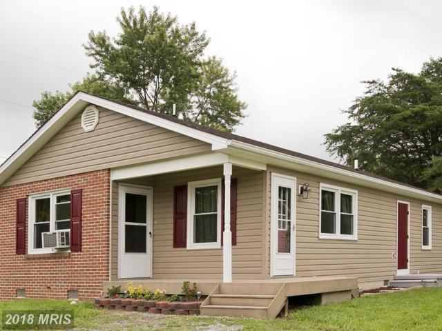 235 Broad Avenue, Winchester, VA 22602 (#FV10313961) :: Bob Lucido Team of Keller Williams Integrity