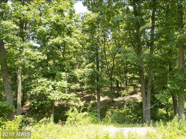 3 Huttle Road, Middletown, VA 22645 (#FV10321511) :: The Maryland Group of Long & Foster