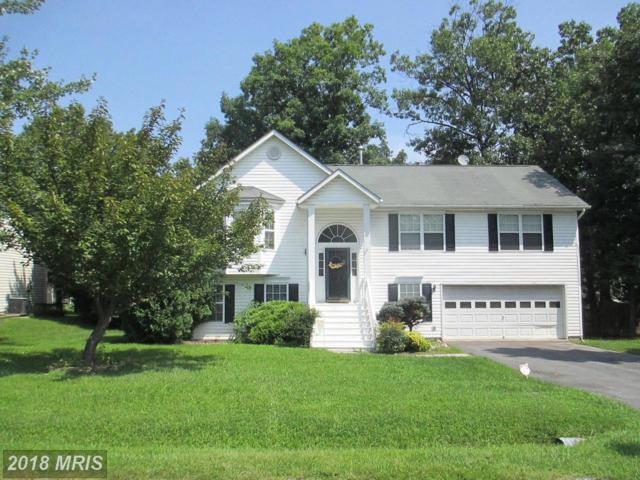 345 Montgomery Circle, Stephens City, VA 22655 (#FV10323546) :: Bob Lucido Team of Keller Williams Integrity