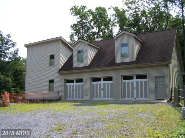 639 Cardinal Drive, Winchester, VA 22602 (#FV10326261) :: Browning Homes Group