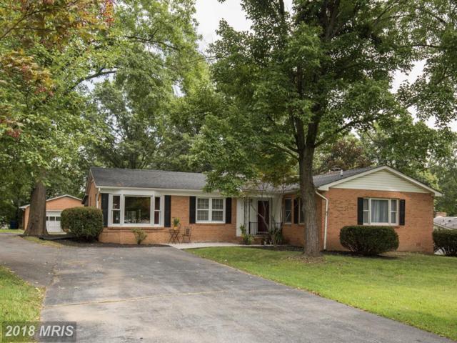 105 Laurel Hill Drive, Stephens City, VA 22655 (#FV10326277) :: RE/MAX Success