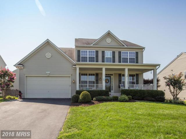 214 Talamore Drive, Stephens City, VA 22655 (#FV10332384) :: Browning Homes Group