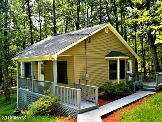 501 Buntline Drive, Winchester, VA 22602 (#FV10336607) :: Browning Homes Group
