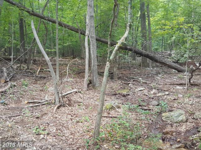 Bluebird Trail, Winchester, VA 22602 (#FV10337927) :: RE/MAX Executives