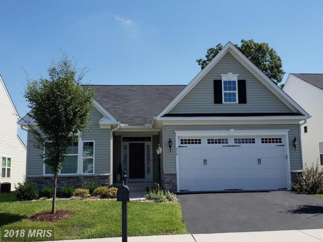 210 Mosaic Court, Stephenson, VA 22656 (#FV10340250) :: Browning Homes Group