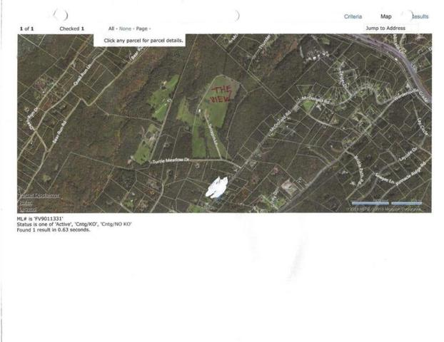 Turtle Meadow Drive, Winchester, VA 22603 (#FV10348048) :: The Maryland Group of Long & Foster