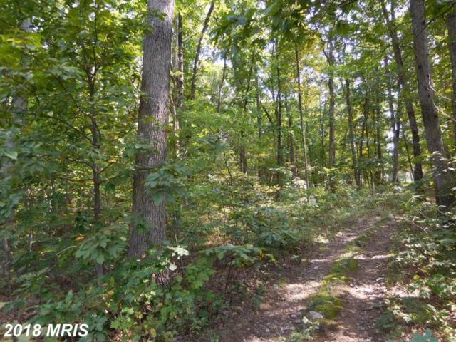 Lot 9B Reynolds Road, Cross Junction, VA 22625 (#FV10353305) :: Hill Crest Realty