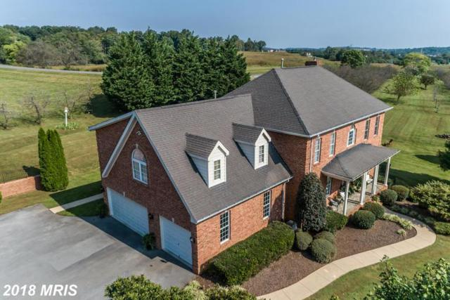 1350 Merrimans Lane, Winchester, VA 22602 (#FV10355224) :: Frontier Realty Group
