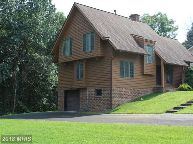 142 Likens Way, Winchester, VA 22602 (#FV9013440) :: Bob Lucido Team of Keller Williams Integrity