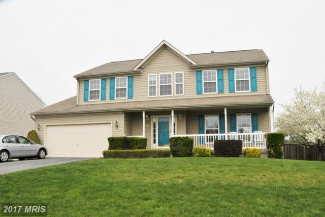 431 Lilys Way, Winchester, VA 22602 (#FV9912959) :: Pearson Smith Realty