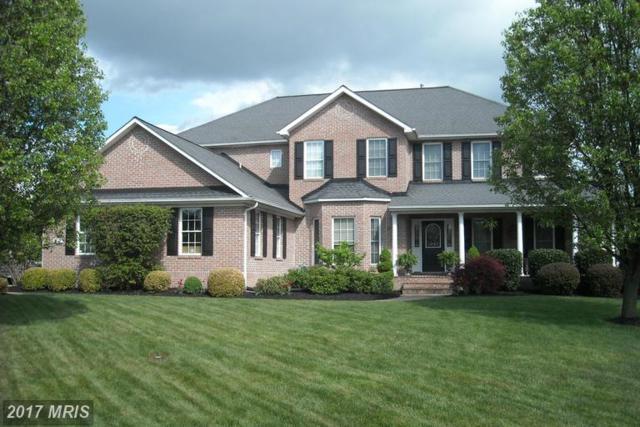 227 Fairfield Drive, Winchester, VA 22602 (#FV9920110) :: LoCoMusings