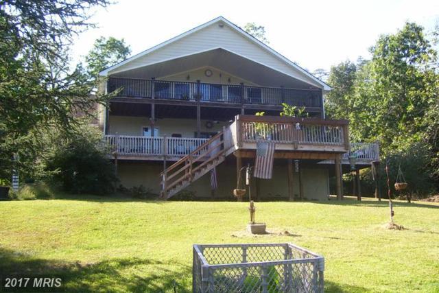 653 Lake Saint Clair Drive, Winchester, VA 22603 (#FV9924114) :: LoCoMusings