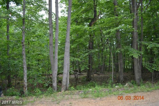 Fox Trail, Winchester, VA 22602 (#FV9927253) :: LoCoMusings
