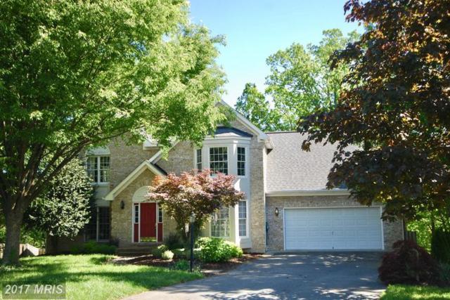 114 Winns Circle, Winchester, VA 22602 (#FV9942389) :: LoCoMusings