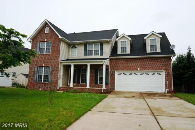117 Van Gogh Terrace, Winchester, VA 22602 (#FV9945261) :: LoCoMusings
