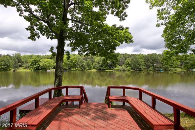 323 Lake Serene Drive, Winchester, VA 22603 (#FV9960582) :: LoCoMusings