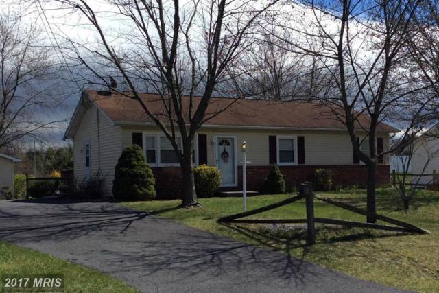 116 Haven Terrace, Winchester, VA 22602 (#FV9965299) :: LoCoMusings