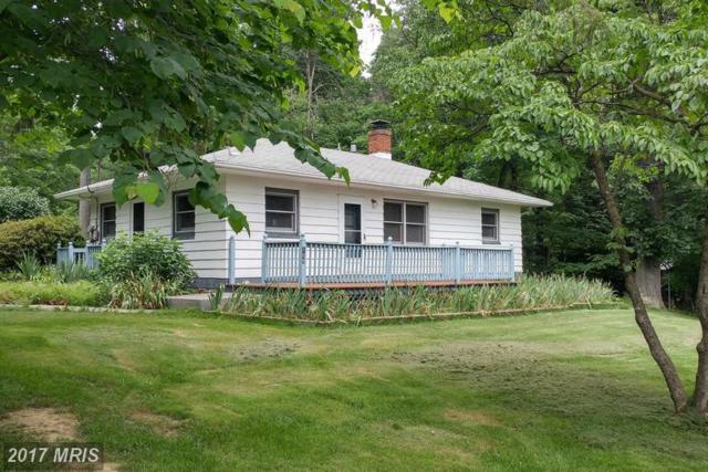 106 Buffalo Trail, Winchester, VA 22602 (#FV9980891) :: LoCoMusings