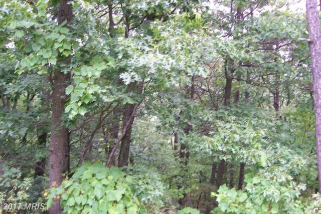 Lot 59 And 60 Aspen Trail, Winchester, VA 22602 (#FV9983897) :: LoCoMusings