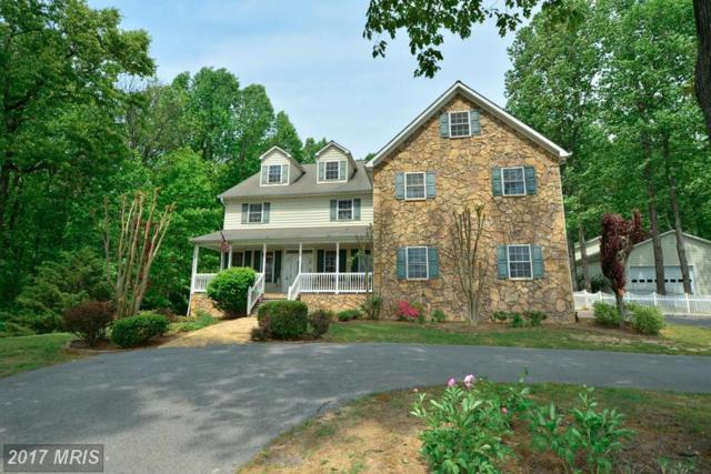 447 Westernview Drive, Middletown, VA 22645 (#FV9987108) :: Colgan Real Estate