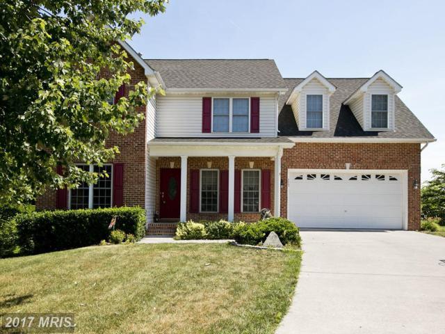 117 Julasar Drive, Winchester, VA 22602 (#FV9994074) :: Pearson Smith Realty