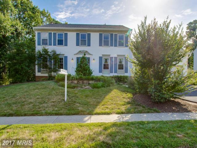6520 Trillium House Lane, Centreville, VA 20120 (#FX10002552) :: LoCoMusings
