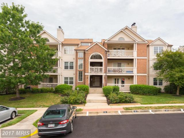 7503 Ashby Lane D, Alexandria, VA 22315 (#FX10003269) :: Pearson Smith Realty