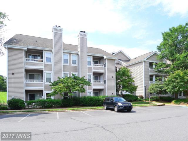 14313 Climbing Rose Way #105, Centreville, VA 20121 (#FX10006739) :: Pearson Smith Realty