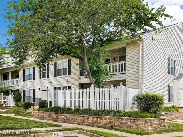 10204-B Willow Mist Court #38, Oakton, VA 22124 (#FX10009190) :: Pearson Smith Realty