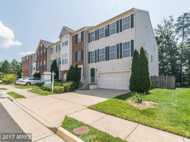 13233 Rolling Plains Court, Herndon, VA 20171 (#FX10010146) :: Pearson Smith Realty