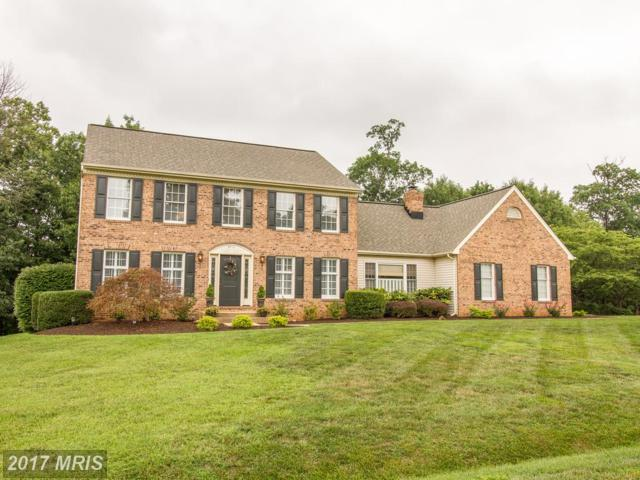 6712 White Post Road, Centreville, VA 20121 (#FX10010242) :: Pearson Smith Realty
