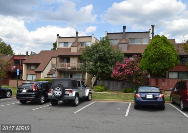 3968 Woodhue Place #8, Alexandria, VA 22309 (#FX10011032) :: Pearson Smith Realty