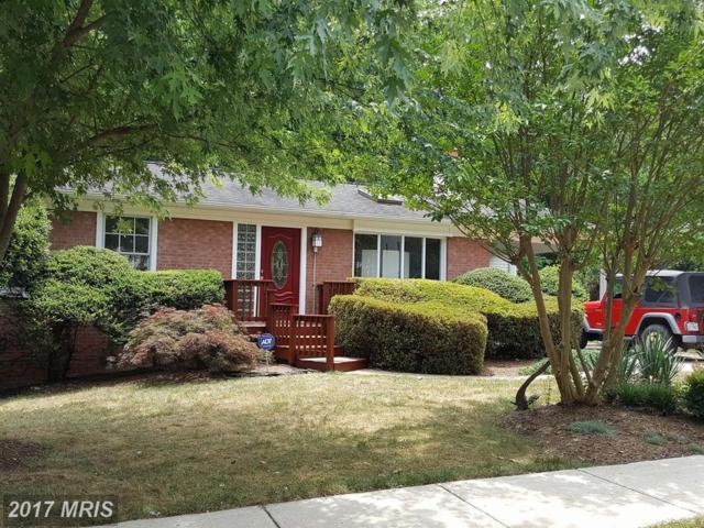 13801 Fulmer Drive, Chantilly, VA 20151 (#FX10011816) :: Pearson Smith Realty