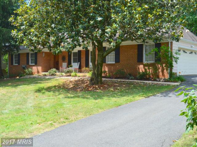 8235 The Midway, Annandale, VA 22003 (#FX10012426) :: Pearson Smith Realty