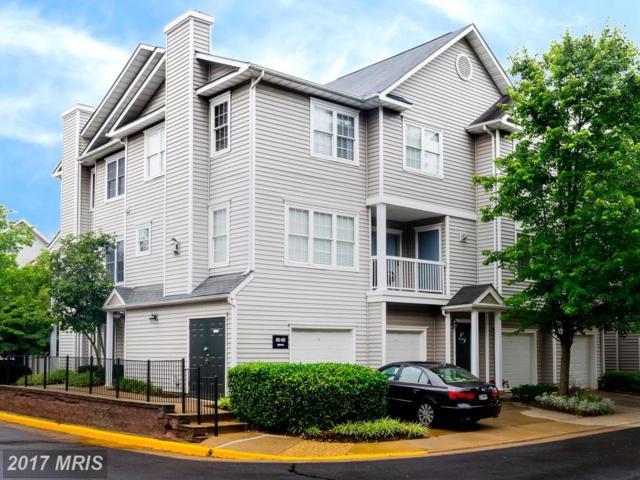 4503 Superior Square, Fairfax, VA 22033 (#FX10013491) :: Pearson Smith Realty