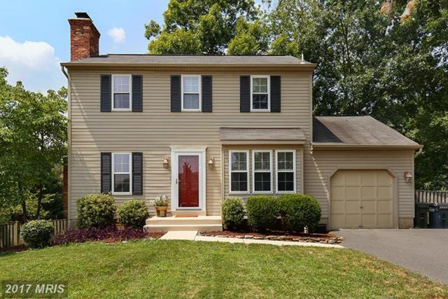 4534 Samuels Pine Road, Chantilly, VA 20151 (#FX10013746) :: Provident Real Estate