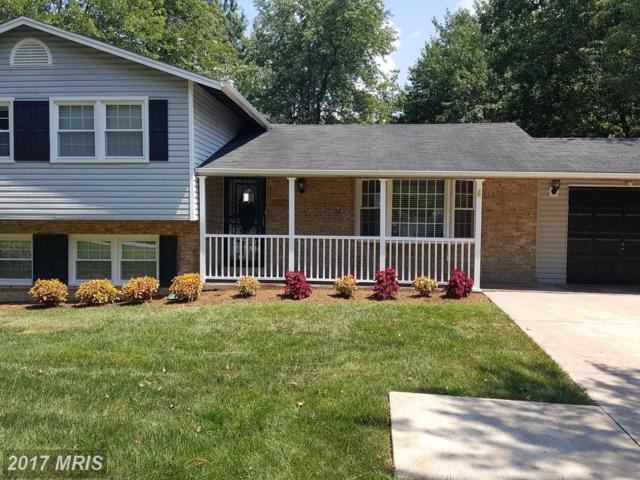 7215 Willow Oak Place, Springfield, VA 22153 (#FX10014053) :: Pearson Smith Realty