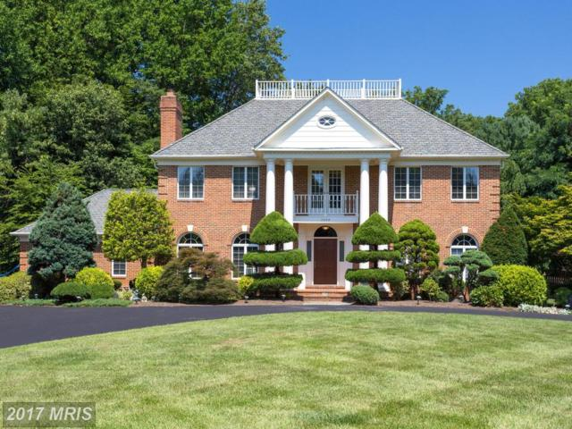 7300 Linganore Court, Mclean, VA 22102 (#FX10014436) :: Browning Homes Group