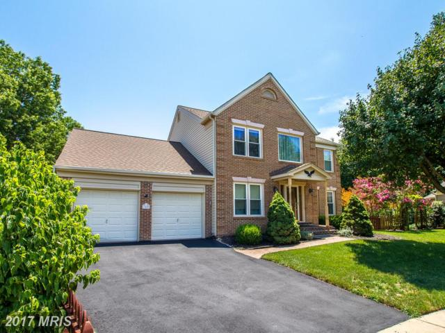 13699 Southernwood Court, Chantilly, VA 20151 (#FX10015307) :: Pearson Smith Realty