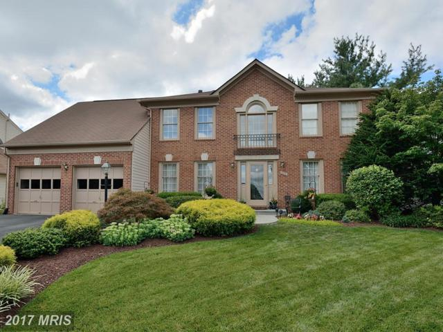 13441 Point Pleasant Drive, Chantilly, VA 20151 (#FX10015494) :: Provident Real Estate